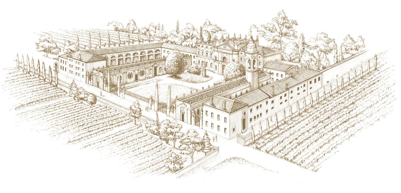 Villa Mosconi Bertani - Una storica villa nel cuore della Valpolicella Classica